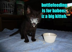 bottlefeeding  is for babeez. iz a big kitteh.