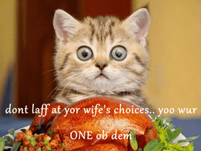 dont laff at yor wife's choices.. yoo wur ONE ob dem