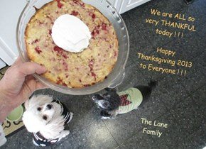 We are ALL so very THANKFUL today ! ! !   Happy Thanksgiving 2013 to Everyone ! ! !
