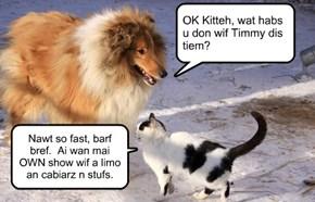 OK Kitteh, wat habs  u don wif Timmy dis tiem?
