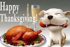 To all my Dog-Loving cheezpeeps!