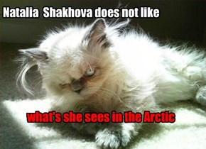 Natalia Shakhova does not like what she sees in the Arctic.
