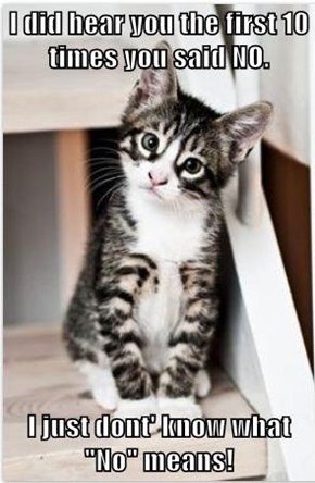 """I did hear you the first 10 times you said NO.  I just dont' know what """"No"""" means!"""