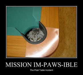 MISSION IM-PAWS-IBLE