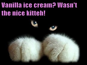 Vanilla ice cream? Wasn't the nice kitteh!