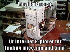 Mozilla Firecat.  Ur Internet Explorer for finding mice, nip and tuna.
