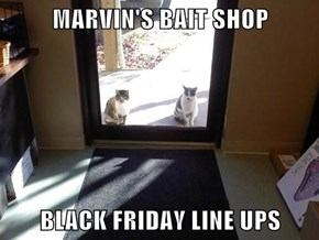 MARVIN'S BAIT SHOP  BLACK FRIDAY LINE UPS