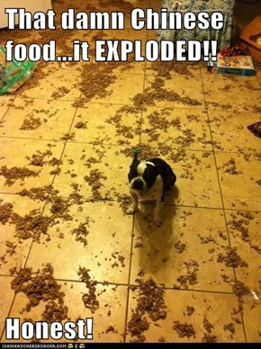That damn Chinese food...it EXPLODED!!  Honest!