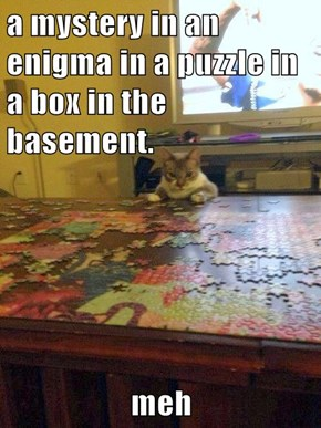 a mystery in an enigma in a puzzle in a box in the basement.  meh