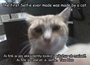 The first Selfie ever made was made by a cat.
