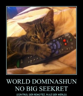 WORLD DOMINASHUN  NO BIG SEEKRET