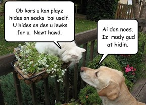 Ob kors u kan playz   hides an seeks  bai uself.   U hides an den u lewks for u.  Nawt hawd.