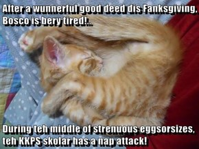 After a wunnerful good deed dis Fanksgiving, Bosco is bery tired!..  During teh middle of strenuous eggsorsizes, teh KKPS skolar has a nap attack!
