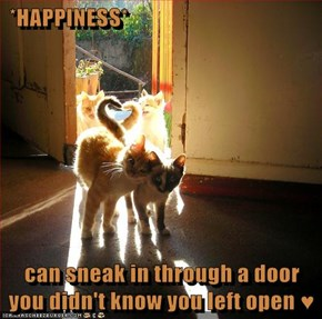 *HAPPINESS*   can sneak in through a door you didn't know you left open ♥