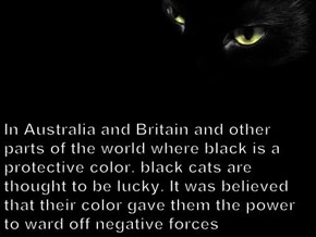 In Australia and Britain and other parts of the world where black is a protective color, black cats are thought to be lucky. It was believed that their color gave them the power to ward off negative forces