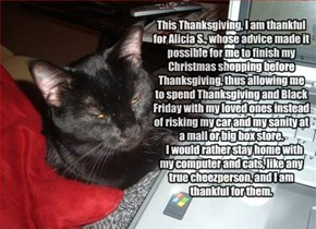 For my cat and my computer, may I be truly thankful . . .