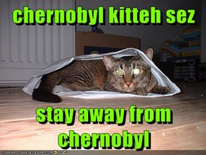 chernobyl kitteh sez  stay away from chernobyl