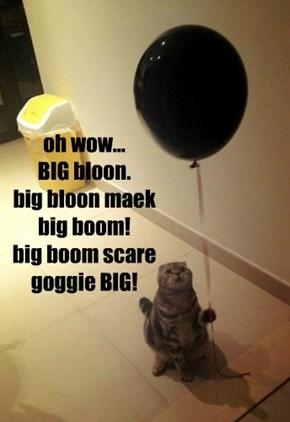 oh wow... BIG bloon. big bloon maek big boom! big boom scare goggie BIG!