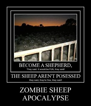 ZOMBIE SHEEP APOCALYPSE