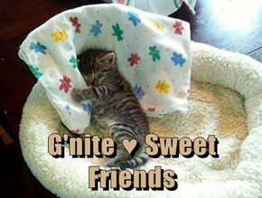 G'nite ♥ Sweet Friends