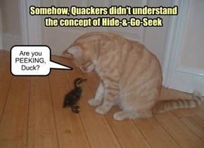 Somehow, Quackers didn't understand the concept of Hide-&-Go-Seek