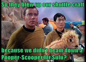 So they blew up our shuttle craft  because we didn't beam down a Pooper-Scooper Mr.Sulu?