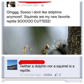 Everyone Knows Squirrels Are Amphibians