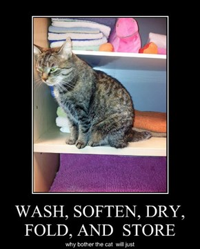WASH, SOFTEN, DRY, FOLD, AND  STORE