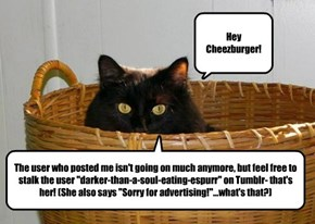 Hey Cheezburger!