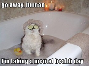 go away, human  I'm taking a mental health day