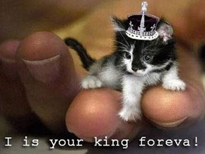 Hail to the King!
