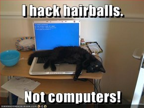 I hack hairballs.  Not computers!