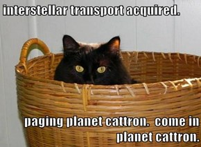 interstellar transport acquired.  paging planet cattron.  come in planet cattron.