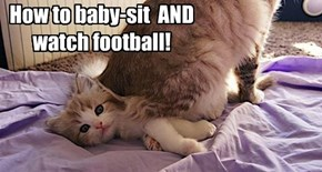 Football seezun nawt good for baby-sittin!