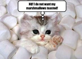 NO! I do not want my marshmallows toasted!