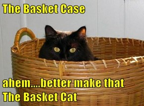 The Basket Case  ahem....better make that The Basket Cat
