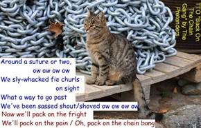 """Kitty's Revenge"" (TTO ""Back On The Chain Gang"" by The Pretenders)"