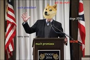 Doge 2016