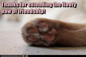 Thanks for extending the floofy paw of friendship!