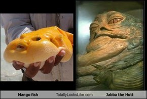Mango fish Totally Looks Like Jabba the Hutt
