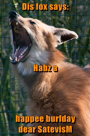 Dis fox says:  Habz a  happee burfday            dear SatevisM