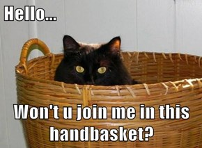 Hello...  Won't u join me in this handbasket?