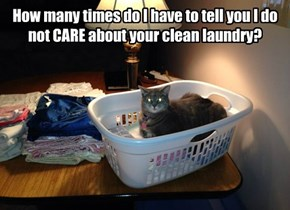 How many times do I have to tell you I do not CARE about your clean laundry?