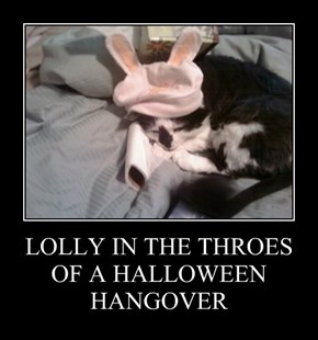LOLLY IN THE THROES OF A HALLOWEEN HANGOVER