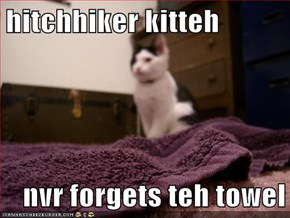 hitchhiker kitteh  nvr forgets teh towel