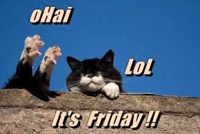 oHai                   LoL  It's  Friday !!