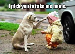I pick you to take me home.