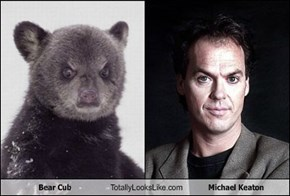Bear Cub Totally Looks Like Michael Keaton