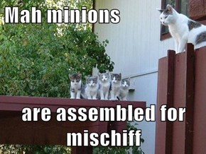 Mah minions  are assembled for mischiff