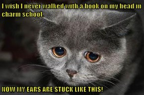 I wish I never walked with a book on my head in charm school.  NOW MY EARS ARE STUCK LIKE THIS!